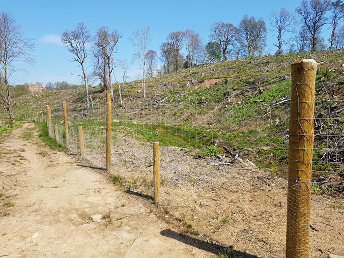 Agricultural Fencing in the Scottish Borders & Edinburgh - 1st for