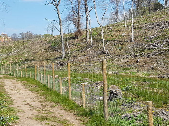 Agricultural Fencing In The Scottish Borders Amp Edinburgh